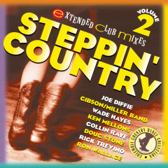 Steppin' Country Volume II - Various Artists
