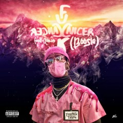 F Cancer (Boosie) [feat. Quavo] - Young Thug, Quavo