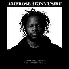 on the tender spot of every calloused moment - Ambrose Akinmusire