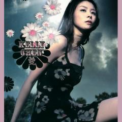 Ai - Kelly Chen