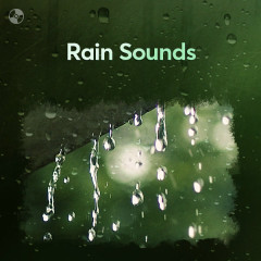 Rain Sounds - Various Artists