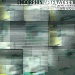 Afterwords (You're So Right) - Endorphin