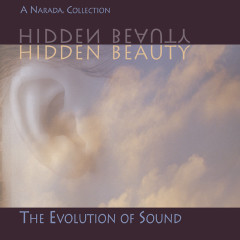 Hidden Beauty - Various Artists