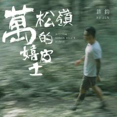 Wan Song Ling De Xi Pi Shi