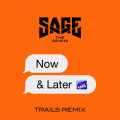 Now And Later (TRAILS Remix) - Sage The Gemini