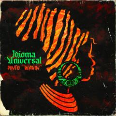 Idioma Universal - Pinto