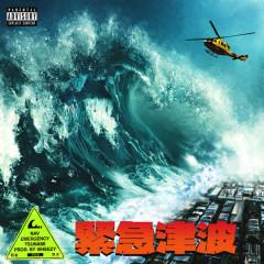 Emergency Tsunami - NAV