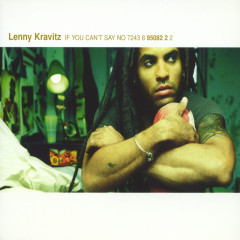 If You Can't Say No - Lenny Kravitz