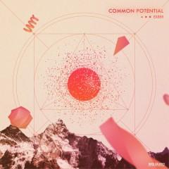 Common Potential - ex8er
