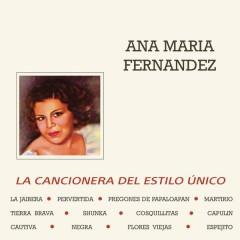 La Cancionera del Estilo Único - Ana Maria Fernandez