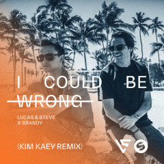 I Could Be Wrong (Kim Kaey Remix) - Lucas & Steve, Brandy