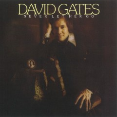 Never Let Her Go - David Gates