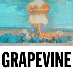 Grapevine (The Remixes) - Tiësto