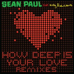 How Deep is Your Love (feat. Kelly Rowland) [Remixes] - Sean Paul