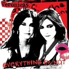 Everything I'm Not [DJ Version] (DMD Maxi)