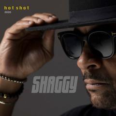 Hot Shot 2020 - Shaggy
