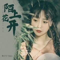 Mạch Thượng Hoa Khai / 陌上花开