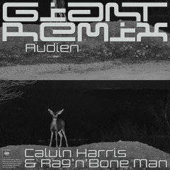Giant (Audien Remix) - Calvin Harris, Rag'n'Bone Man