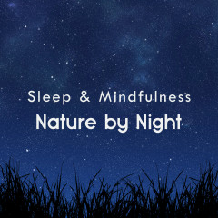 Nature by Night (Sleep & Mindfulness) - Sleepy Times, Night Sounds, Natural Sound Makers