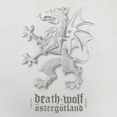 III: Östergötland