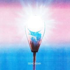 Hallelujah (Seiho Remix)