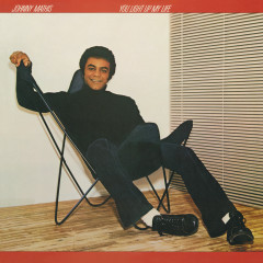 You Light Up My Life - Johnny Mathis