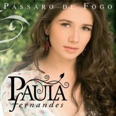 Pássaro De Fogo - Paula Fernandes