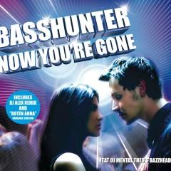 Now You're Gone ( feat. DJ Mental Theos Bazzheadz) - Basshunter, DJ Mental Theos Bazzheadz
