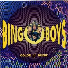 Color Of Music - Bingoboys