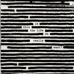 Déjà Vu - Roger Waters