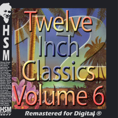 Twelve Inch Disco Classics from the 70s, Vol. 6 - Various Artists