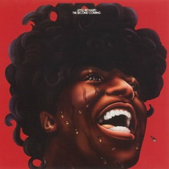 The Second Coming - Little Richard