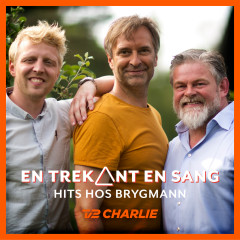 En Trekant En Sang - Hits Hos Brygmann - Various Artists