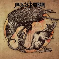 Above / Below - The Acacia Strain