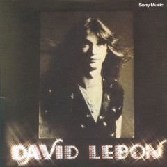 David Lebon - David Lebon