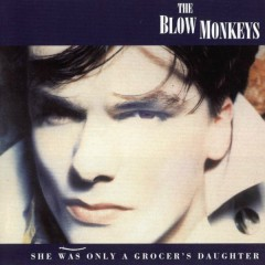 She Was Only A Grocer's Daughter - The Blow Monkeys