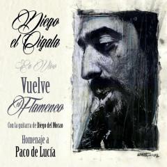 Vuelve el Flameco: Homenaje a Paco de Lucía - Diego Del Morao, Diego El Cigala