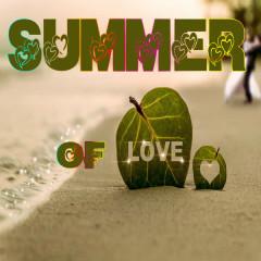 Summer of Love - Various Artists