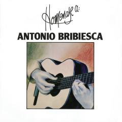 Homenaje a Antonio Bribiesca - Antonio Bribiesca