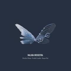 Maluba Orchestra - MaLuBa Orchestra, Fredrik Lundin, Kasper Bai, Marilyn Mazur