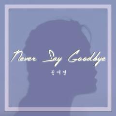 Never Say Goodbye - Kwon Ae Jin