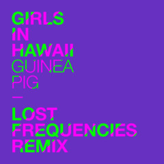Guinea Pig (Lost Frequencies Remix)