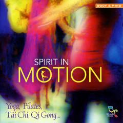 Spirit in Motion - Various Artists