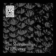 The Shortcomings of Efficiency