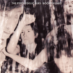 Book of Days - The Psychedelic Furs