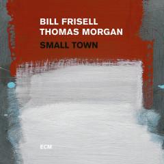 Small Town - Bill Frisell, Thomas Morgan