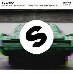 Drop That Low (When I Dip) (Timmy Trumpet Remix) - Tujamo
