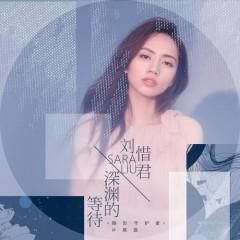Vực Sâu Của Chờ Đợi / 深渊的等待 - Lưu Tích Quân