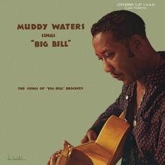 Muddy Waters Sings Big Bill Broonzy - Muddy Waters