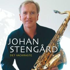 Det vackraste - Johan Stengård
